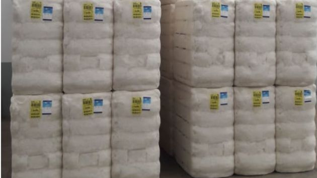 Primeiros fardos de algodão paulista já recebem o selo da Certificação ABR e Licenciamento BCI
